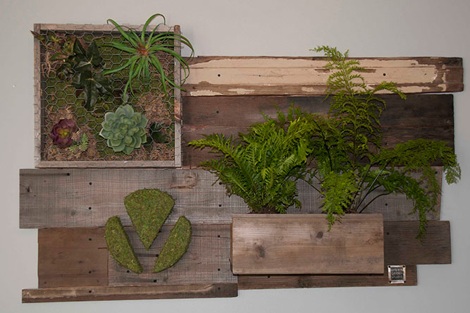 brand signs, moss logo, Living wall, reclaimed wood, moss, succulents, ferns, air plants, planters, custom logos, office design, interior design, logo in moss, monogramed letter, business logos, corporated signage, branding, custom sign, tradeshow, ferns, office design,Corporate signage, business signage, branding, custom sign, logos, moss logos, moss corporate logos, business logo, startup logo, company logo, office decor, office, logo, home decor, handmade, reclaimed, custom sign, interior design, wood work, tradeshow