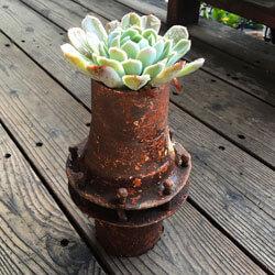 succulents, rustic, wheel well, rusted parts, succulent holder, live succulents, antique tools, living wall art, rustic decor, rustic home decor, rustic house decor, rustic farm decor