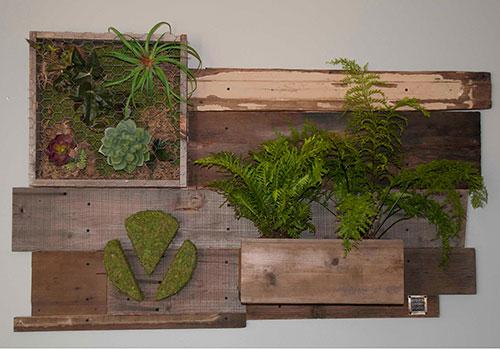 Vertical wall garden, Living wall, reclaimed wood, moss, succulents, ferns, planters, custom logos, moss logo, green living room walls, living garden wall art