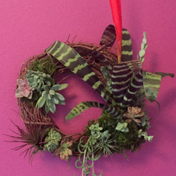 Succulent wreath,live plants, succulent arrangements, airplants, planters, succulents, , succulent garden, live wreath, living wreath, rustic decor