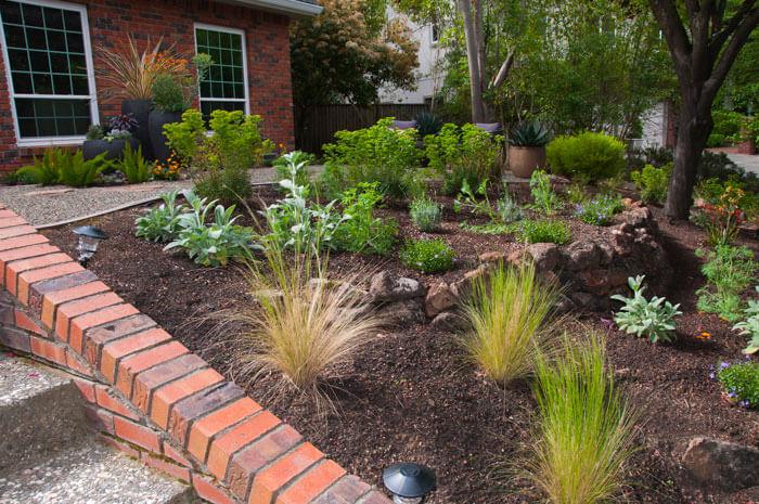 Urban garden studio, Garden landscape design, Succulent planters, landscapes, live plants, planters, landscaping, succulents, succulent arrangements, succulent garden, cactus, cacti,